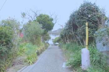 海も山も時間もある。神奈川の葉山で1年暮らしてみました。
