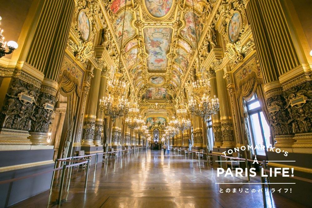 芸術を身近に体験できる場所『オペラ座』