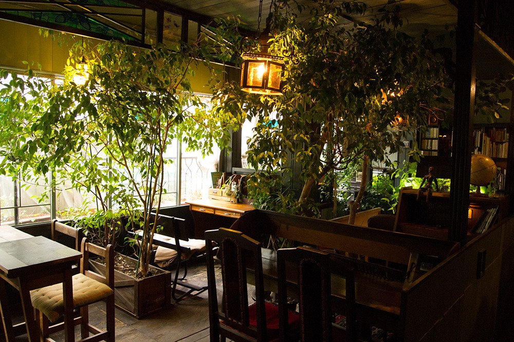 暑さと情報から少し離れて。都会で見つけた、とっておきの避暑カフェ