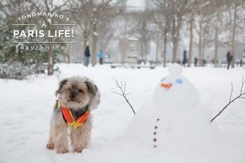 フランスの雪だるまは鼻が高い&スタイル抜群!