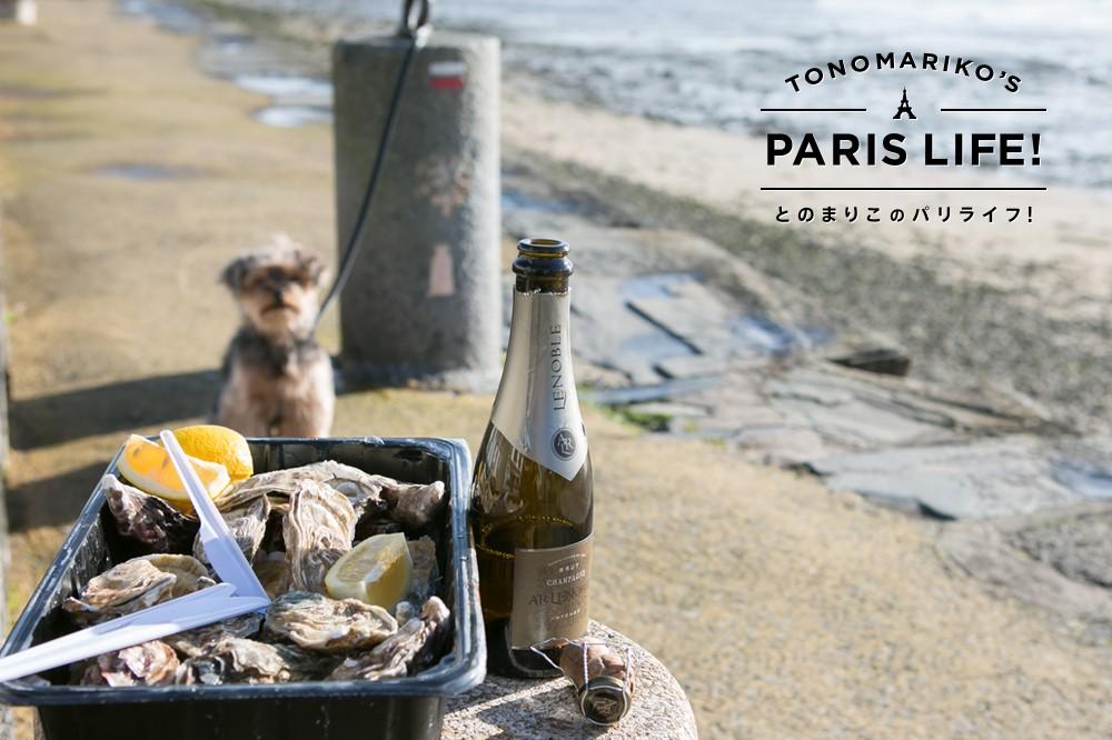 フランスの冬グルメといえば牡蠣!生で食べるのがフレンチ流!