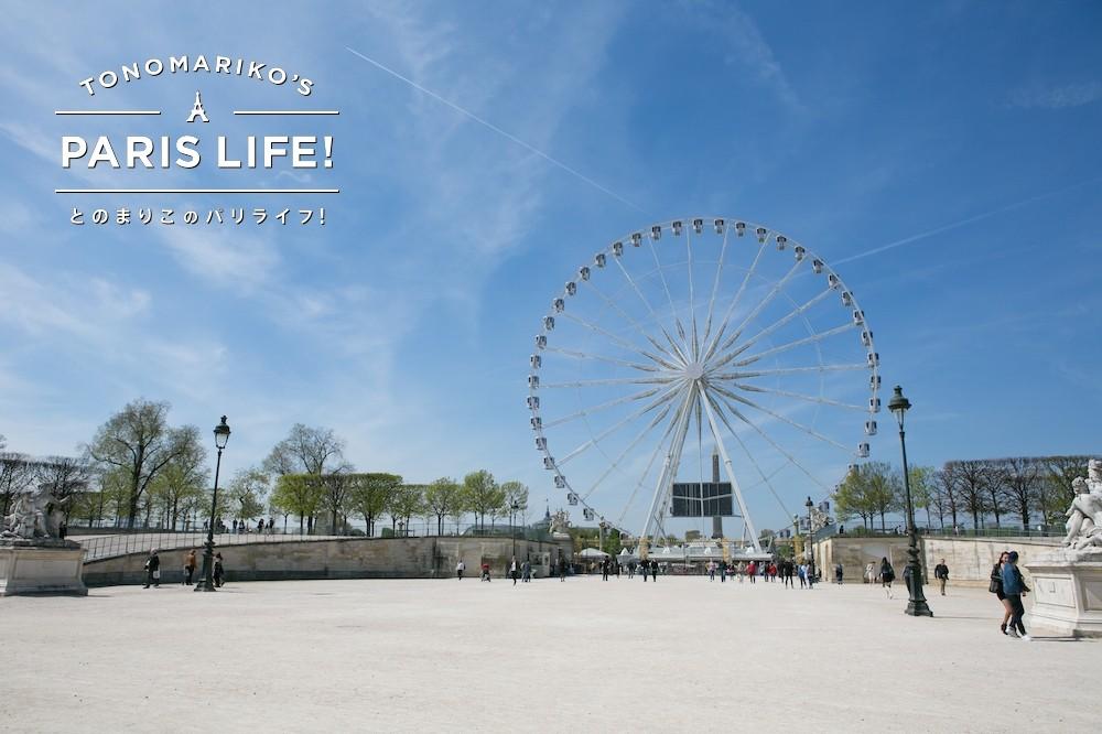 今年は9月まで!コンコルド広場の観覧車から季節の移り変わりを一望!