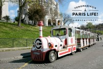 旅先ではまずプティ・トランに!フランスの街を走る小さな列車