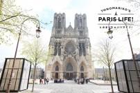 パリから45分。シャンパンと世界遺産の街ランスへおとなの遠足