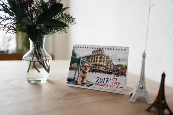 【プレゼント付き】バブーとパリをめぐる2017年カレンダー