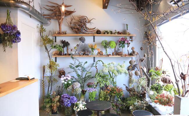 西荻窪『cotito』の店内に並ぶ植物