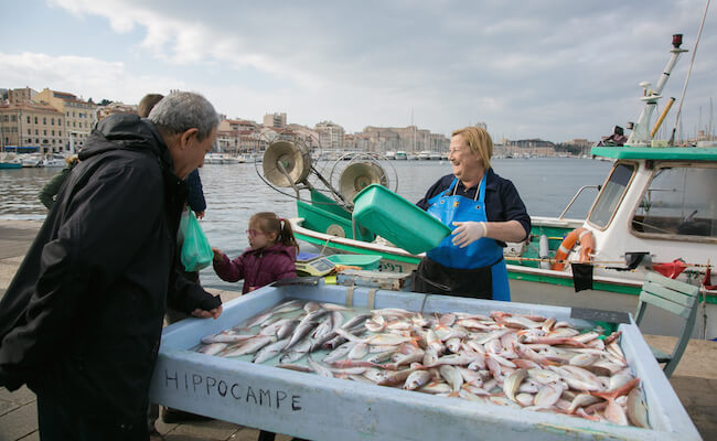 採れたての魚を売る魚市場