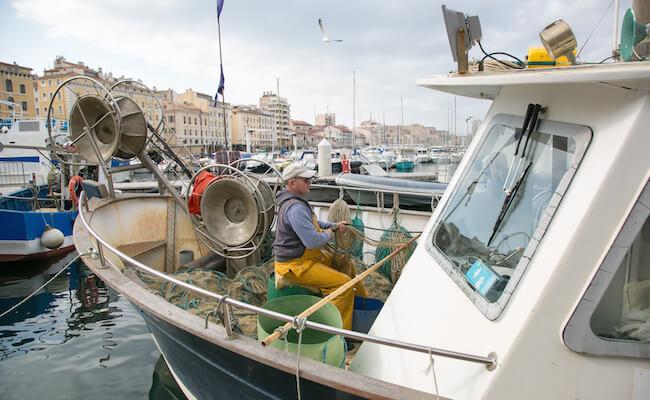 マルセイユの港で水揚げされる海産物