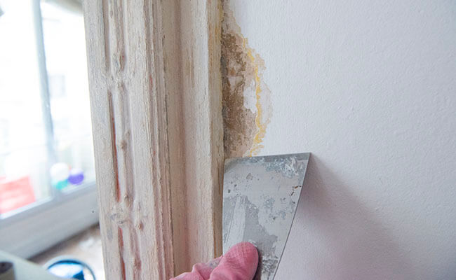 フランス流DIYブリコラージュを実践!リビングの壁を塗り替えてみた!