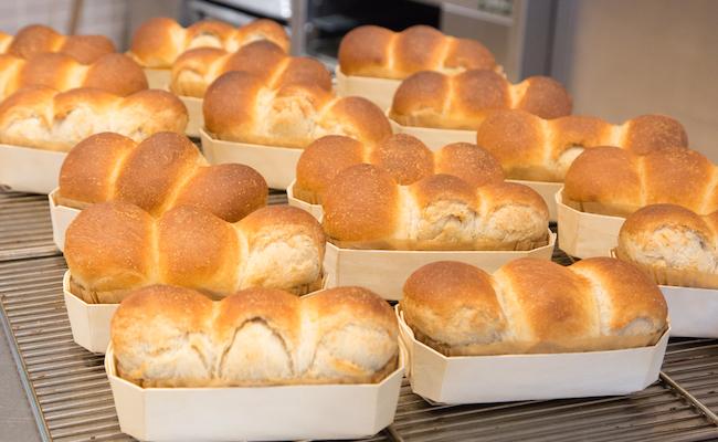 焼きあがった食パン