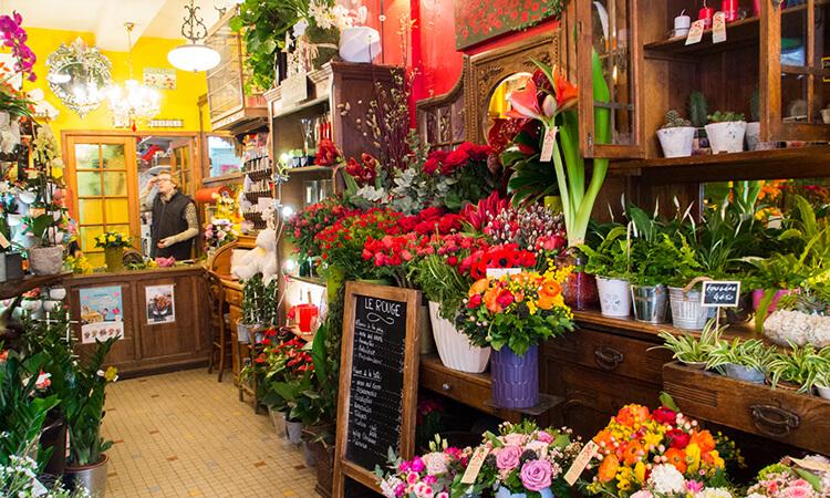 パリに春の訪れを教えてくれる!黄色いポンポンがかわいいミモザの花