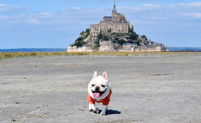 世界遺産「モン・サン・ミッシェル」とガレットを楽しむブルターニュの旅