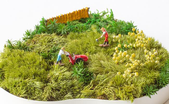 「ACCENT GREEN」と「The LAND」のユニークなグリーンでお部屋をさわやかに!