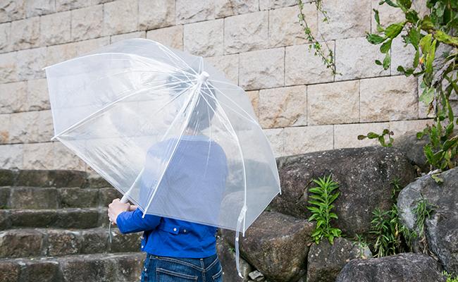 使い捨てず長く大切に使えるビニール傘!『+TIC』のホワイト