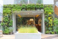 渋谷の街中に緑に囲まれたベーカリー出現!食感にこだわった『GREEN THUMB』の進化系パン