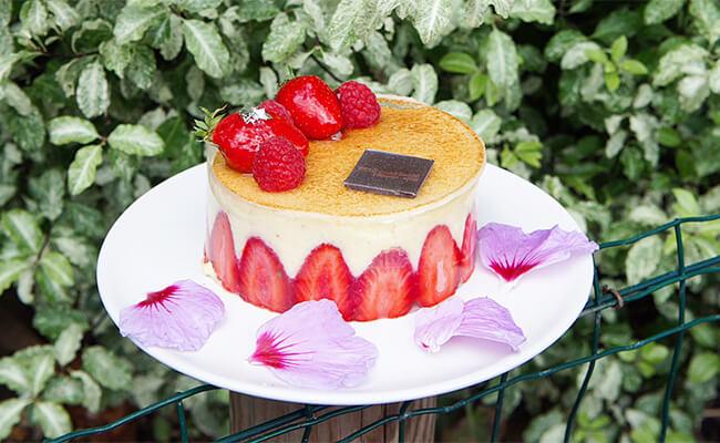 まるでジュエリーのようなケーキ!パリ・オペラ座『Carl Marletti(カールマルレッティ)』