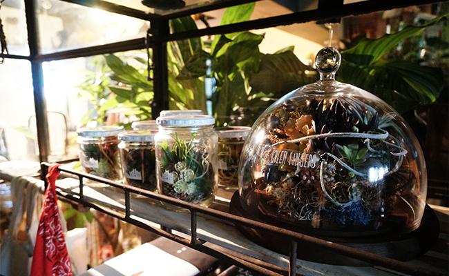 暮らしにグリーンを取り入れたい!三軒茶屋『GREEN FINGERS』へ