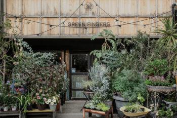 暮らしにグリーンを取り入れたい!『GREEN FINGERS』に聞く植物のある暮らし