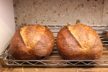 優しい酸味ともっちり食感がおいしい北欧風パン!谷中『VANER』のサワードウブレッド