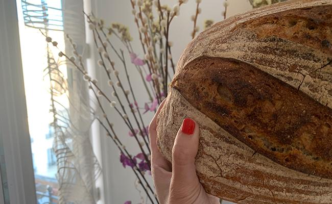 パン屋『chardon(シャルドン)』のハードパン