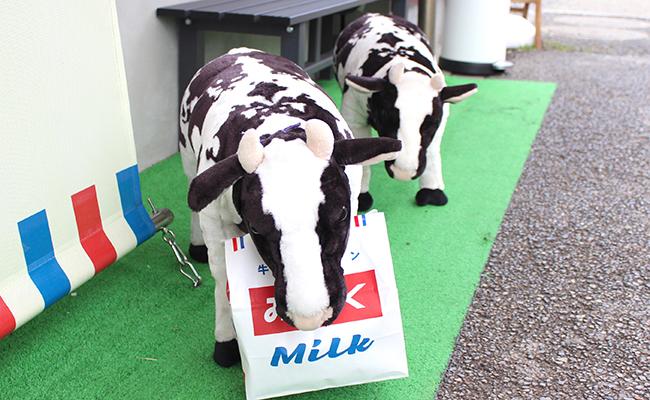 『牛乳食パン専門店 みるく』の店先にいる牛の置物