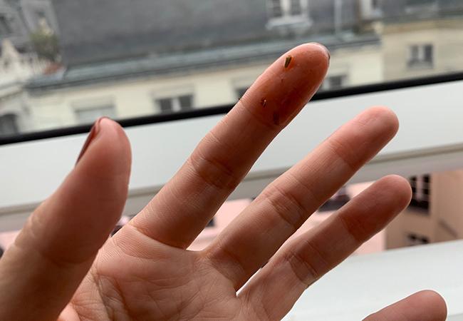 フォカッチャの油がついた手