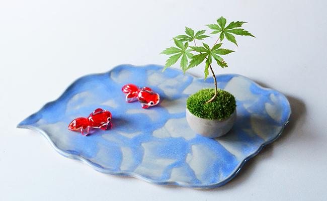 ミニ盆栽『石木花(せきぼっか)』と受け皿