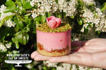「美しいケーキ屋さん」がコンセプトのポップなスイーツをお届け!『Chez Bogato』