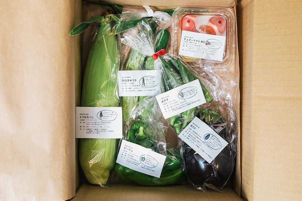おいしい無農薬野菜をお取り寄せ『青果ミコト屋』