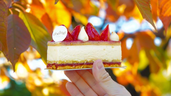 甘みと酸味のバランスが絶妙!老若男女に愛される「いちごのチーズムースケーキ」