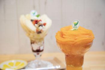 グラスの底までぎゅっと詰まった旬の味覚!『フルーツすぎ』の絶品フルーツパフェ