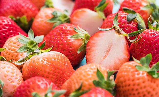今回は、日本中の農家や漁師からこだわり食材やお花を直接お取り寄せできるオンライン直売所『食べチョク』を利用していちごをお取り寄せしてみました。