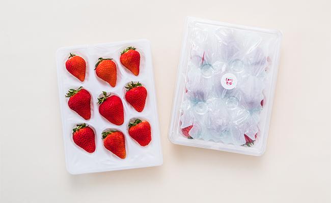 鮮やかな赤色に染まった大粒のいちごは、熊本のオリジナル品種「ゆうべに」(園田農園)。
