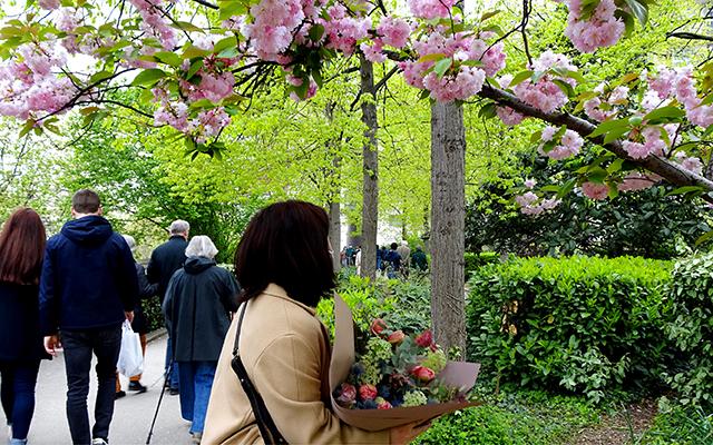 十河藍子さん連載。パリの花屋さん『CHAMP LIBRE』