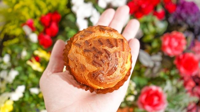 ハーブを使ったシャーベットも!パリの味を堪能する碑文谷『パティスリー ジュンウジタ』
