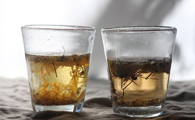 植物療法を手軽に取り入れるコツとして、まずは普段飲む飲み物の1~2杯をハーブティーに変えること。